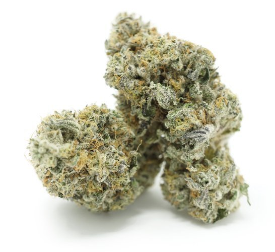 chocolate OG flowers Serene Farms Online Dispensary