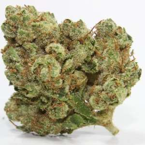 ghost OG serene farms online dispensary